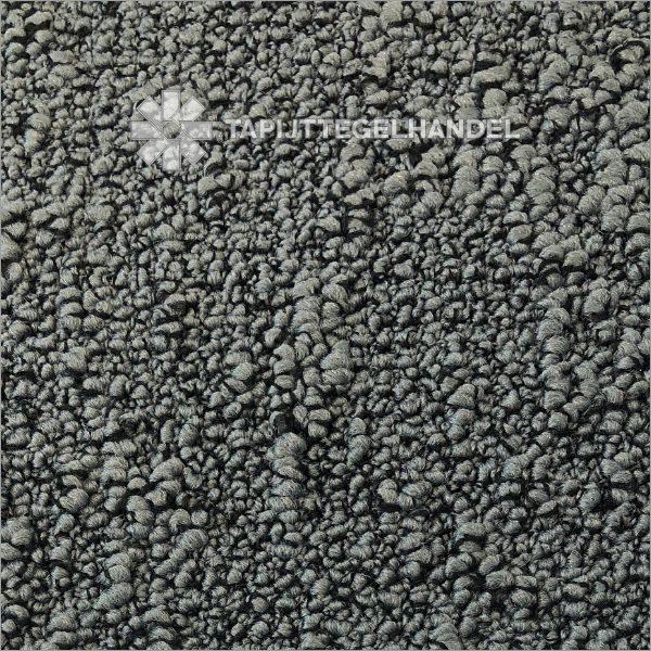 Tapijttegel Desso Fields 9024 50x50 cm Soundmaster